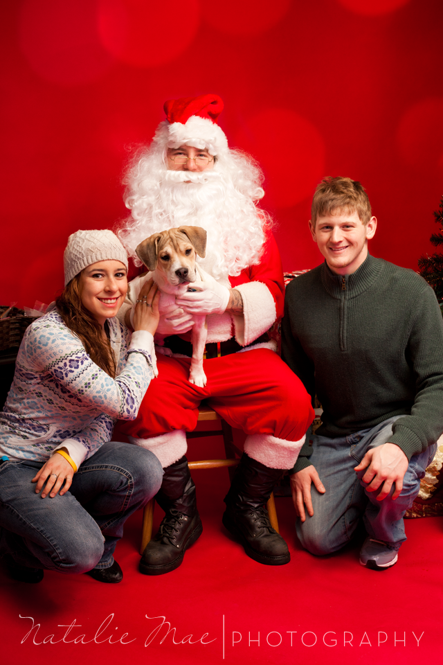 Santa pet photos at Wright Brand Pet Supplies